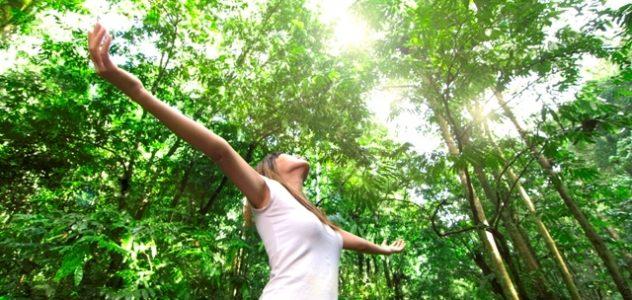 חורשת טל היא אתר טבע הנמצא בלוקיישן אידיאלי, ממש למרגלות הר החרמון. האתר מתפרש על פני כ-700 דונמים, המכילים מדשאות ירוקות, אגם שחייה צונן הניזון ממי נחל דן, שמורת סחלבים […]